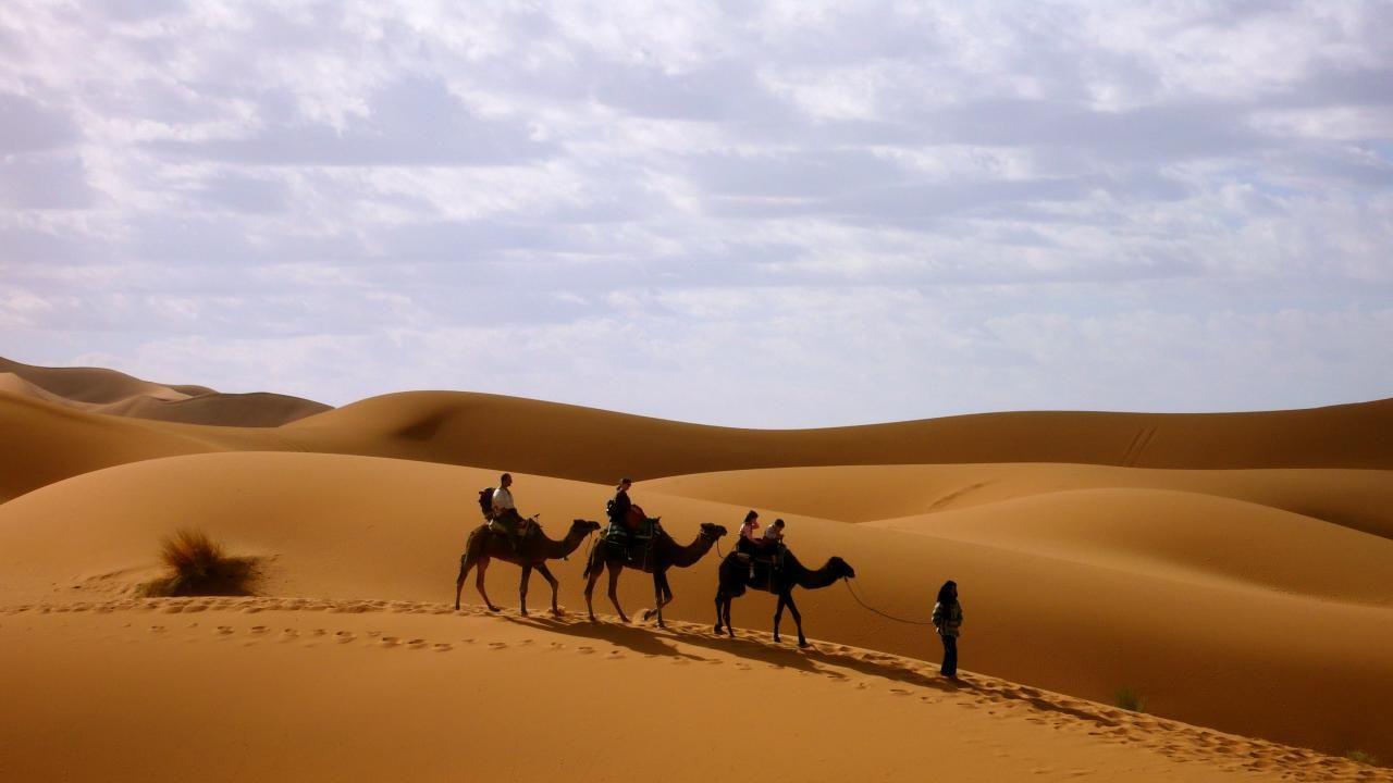 Исмаил Шангареев - Верхом на верблюдах по пустыне (ОАЭ)