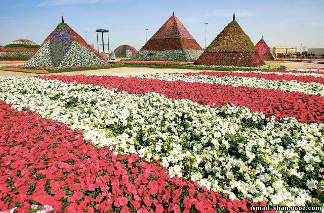 Шангареев Исмаил - Парк цветов вДубае